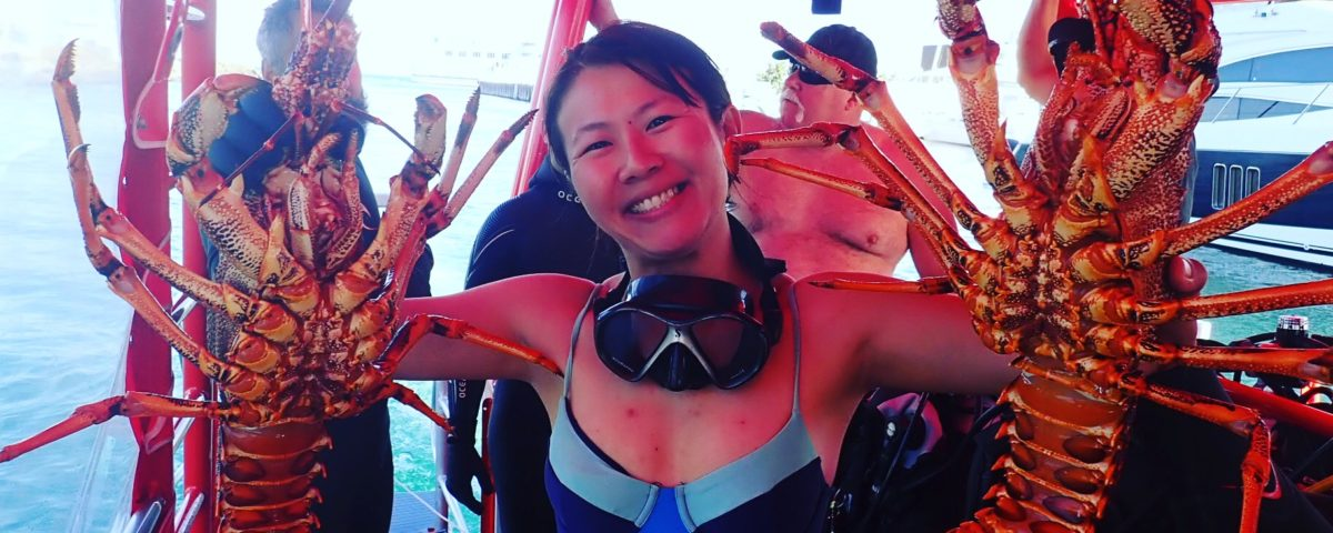Cray Diving - Catching Lobster