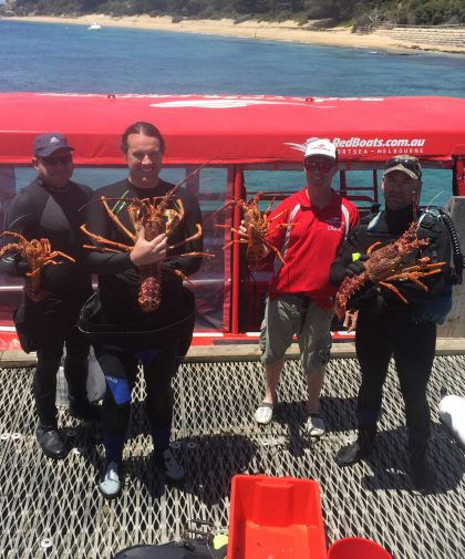 """Cray Diving for Dummies"" – Scuba Diving for Lobsters"